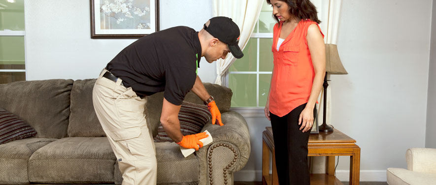 Greensburg, PA carpet upholstery cleaning