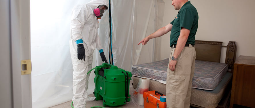 Greensburg, PA mold removal process